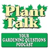 Your Gardening Questions artwork