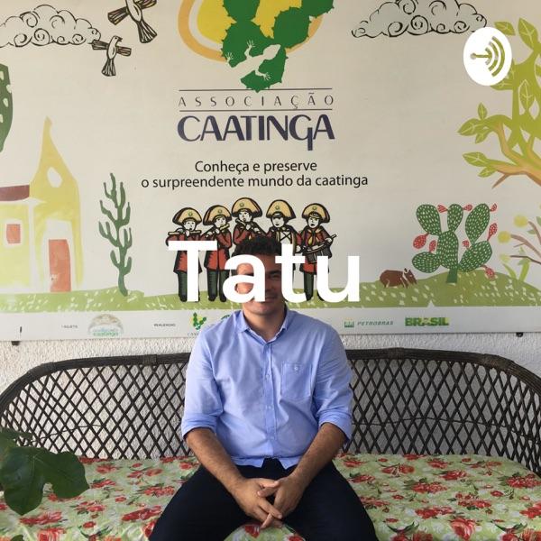 Tatu - Bola