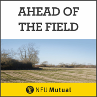 Ahead Of The Field podcast