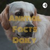 Animal Facts Daily