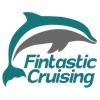 Fintastic Cruising artwork