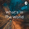 What's In The World artwork
