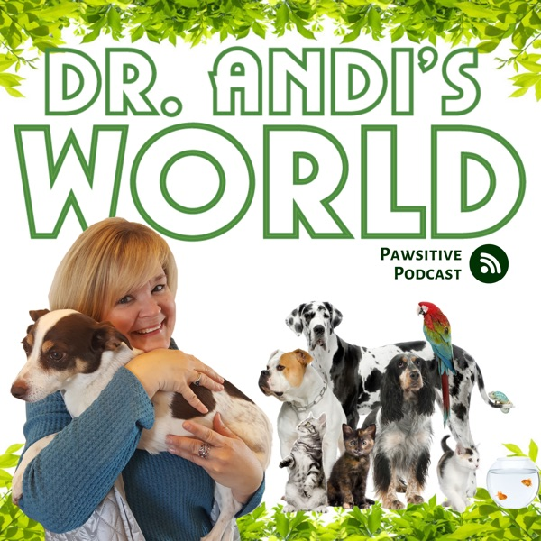 Dr. Andi's World