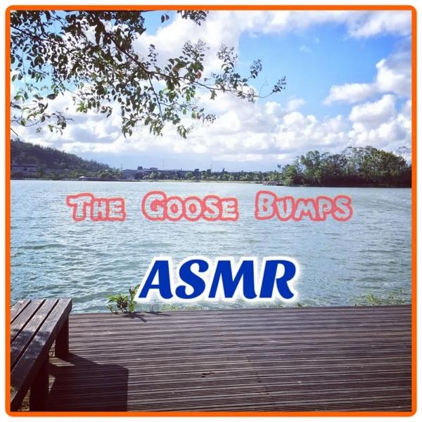 "The Goose Bumps ASMR ""G皮疙瘩"" image"