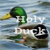 Holy Duck artwork