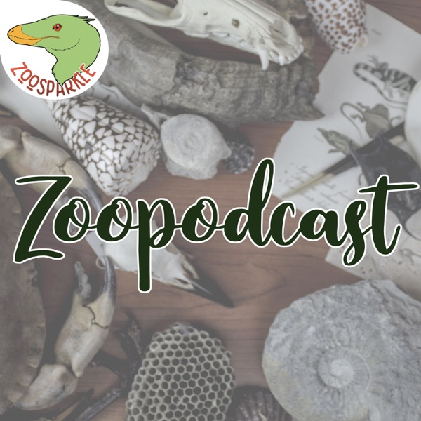 Zoopodcast