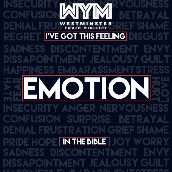 I've Got This Feeling: Emotion in the Bible