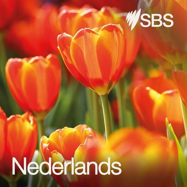 SBS Dutch