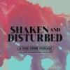 Shaken and Disturbed artwork