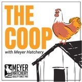 Image of The Coop with Meyer Hatchery podcast