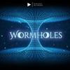 Wormholes artwork