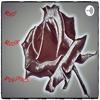 Red Rose Politics artwork