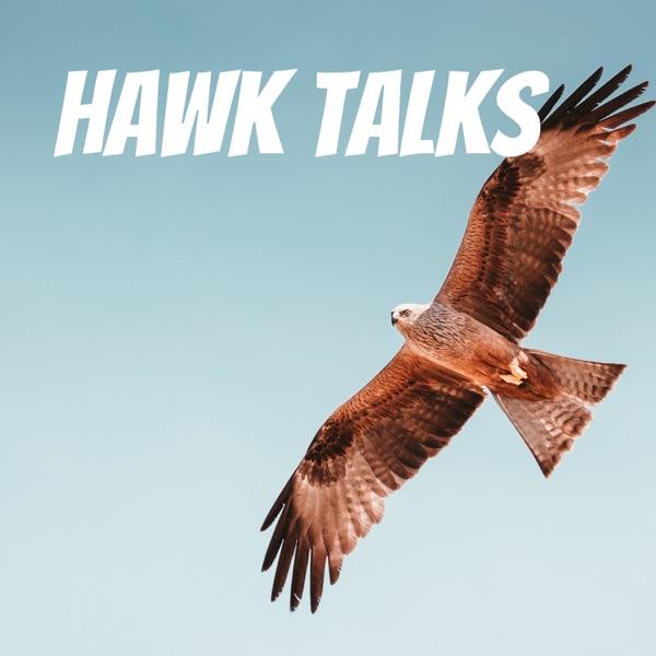 Hawk Talks Artwork
