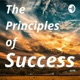 The Principles of Success