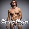 Steamy Stories artwork