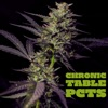 Chronic Table with the Portland Cannabis Tasting Society artwork