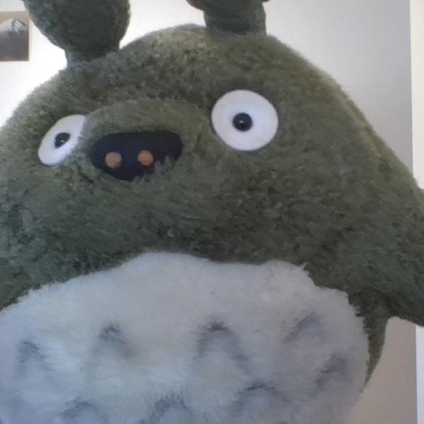 政治Totoro
