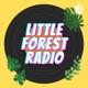 宇宙人姉妹の日常 Little Forest Radio