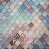 Volleyball Positions artwork