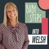 Baby Steps Into Welsh artwork