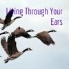 Living Through Your Ears artwork