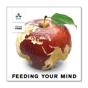 Feeding Your Mind