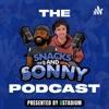 Snacks And Sonny artwork