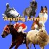 Amazing Animals artwork