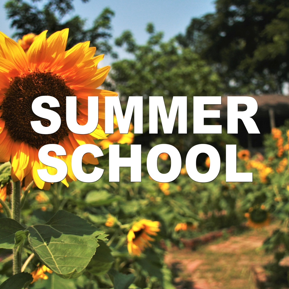 Summer School with Sam Sheffer and Tyler Gold
