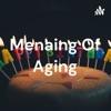 Menaing Of Aging artwork