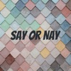 Say or Nay artwork