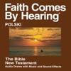 Polska Biblia (udramatyzowana) Nowe Przymierze Translation - Polish Bible (Dramatized)
