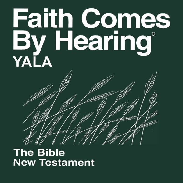 Yala Bible (Non-Dramatized)