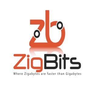 Zigbits Network Design Podcast