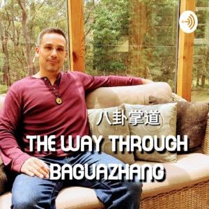 The Way through Baguazhang - 八卦掌道