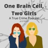 One Brain Cell, Two Girls artwork