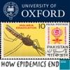 How Epidemics End artwork