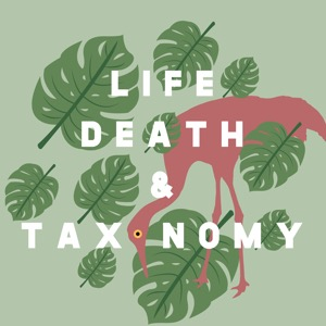 Life, Death, and Taxonomy