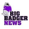 Big Badger News  artwork