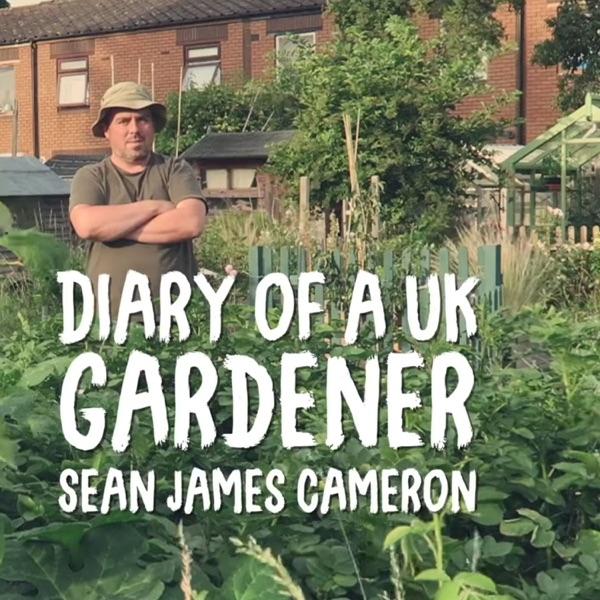 Sean's Kitchen Garden