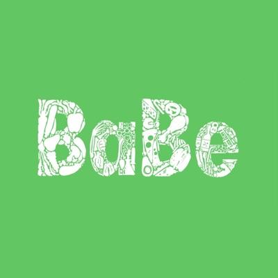BaBe Update