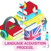 Language Acquisition Process  artwork