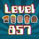 Level 857 Video Game Podcast