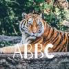 ABBC artwork