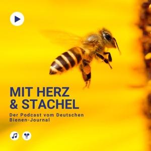 Mit Herz & Stachel - Der Podcast vom Deutschen Bienen-Journal