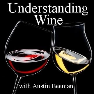 Cover image of Understanding Wine:  Austin Beeman's Interviews with Winemakers