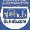 SLHub.com artwork