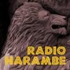 Radio Harambe artwork