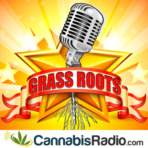 Cover image of Grassroots Marketing