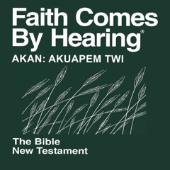 Akan: Akuapem Twi Bible (Non-Dramatized)